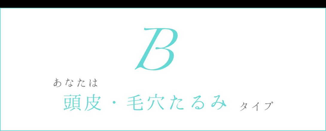 Bは頭皮・毛穴たるみタイプ